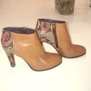 Tommy Hilfiger Bootie - two tone leather heel